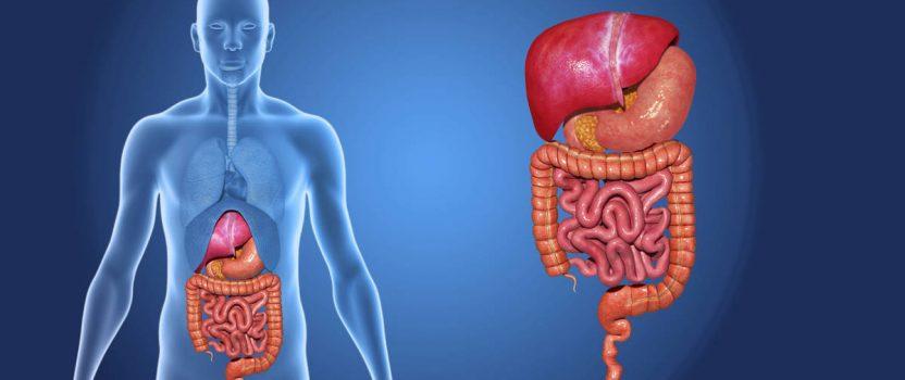 Svetovni dan kroničnih vnetnih črevesnih bolezni – KVČB